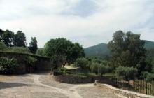 Дорога из Ватопеда