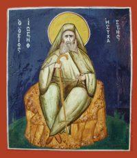 икона преподобного Иосифа Исихаста